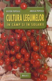Cultura legumelor in camp si in solarii